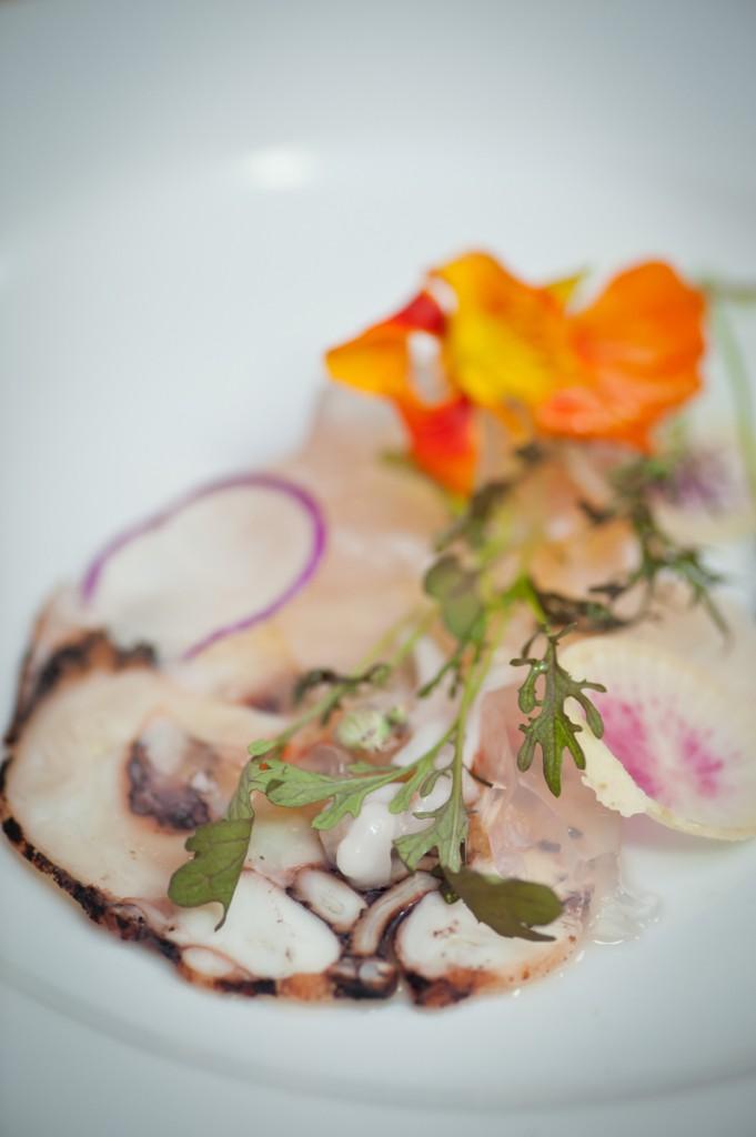 Food Photos, Food Pics